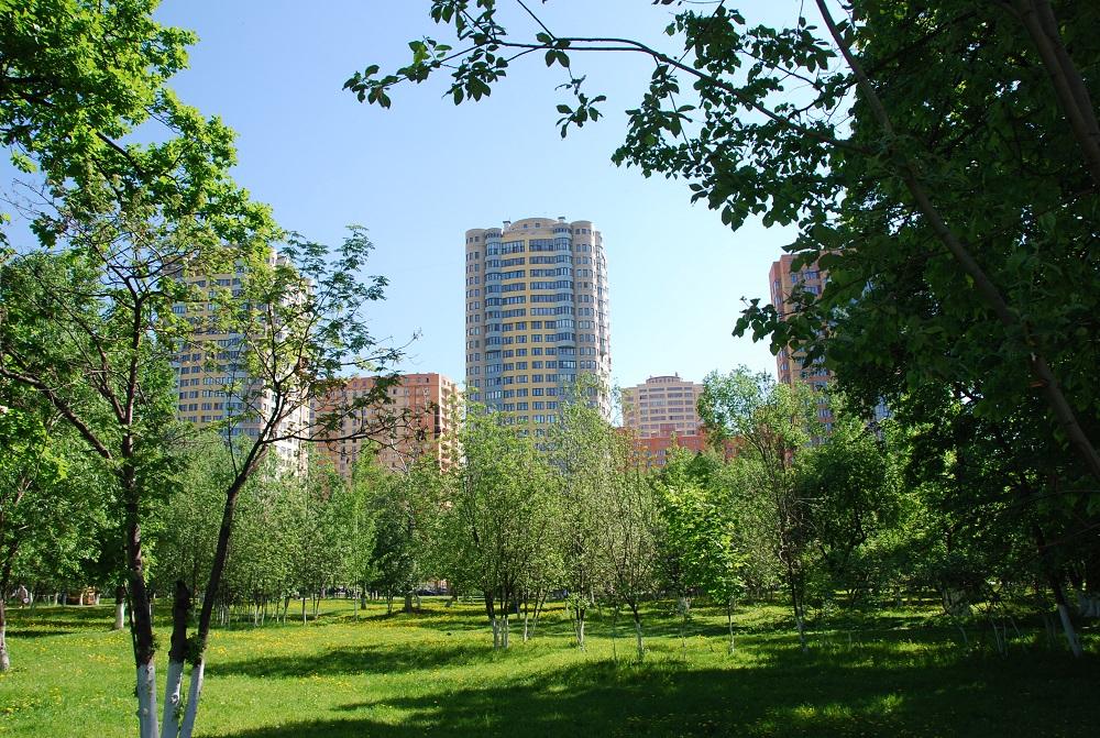 На какой стадии строительства купить недвижимость, чтобы минимизировать риски