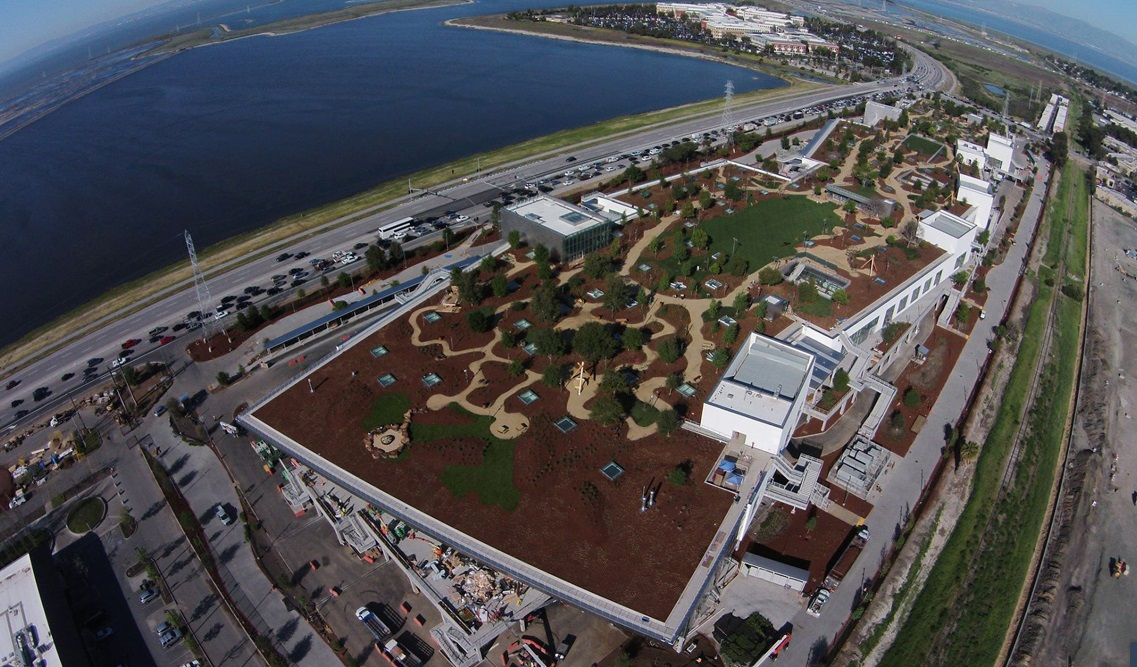 The 9-Acre Green Roof at Facebook's New HQ
