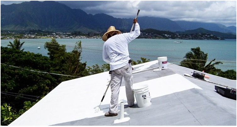 These eco rooftops are an insanely easy way to save the environment for the price of paint